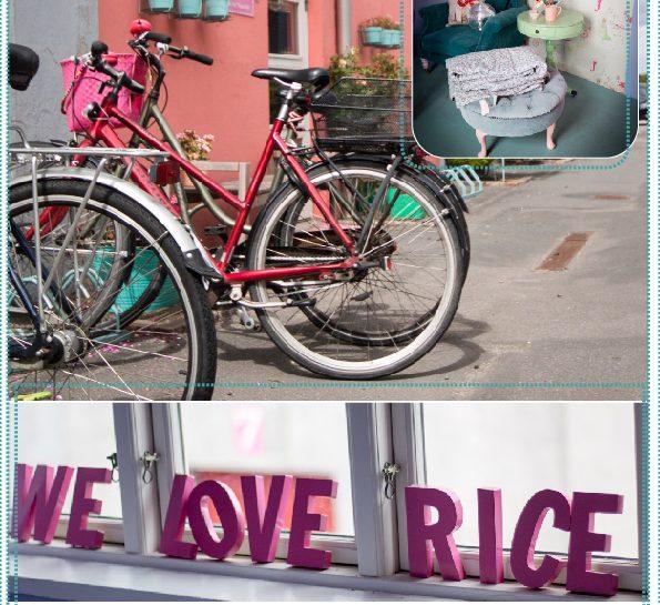 Rice DK Autumn 2015 Preview